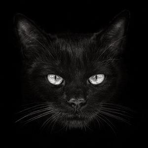אבן עין החתול - לפרנסה ולהצלחה עסקית